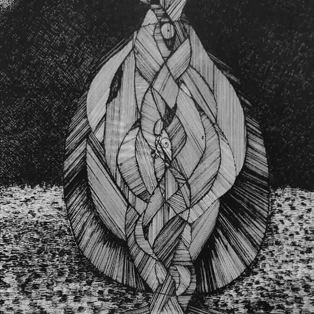 Warkocz - Amadeusz Popek